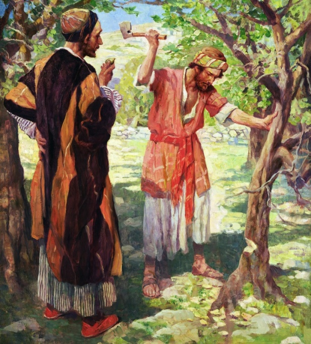lessons-from-the-parables-the-fig-tree-a-lesson-in-the-patience-and-judgment-of-god_1
